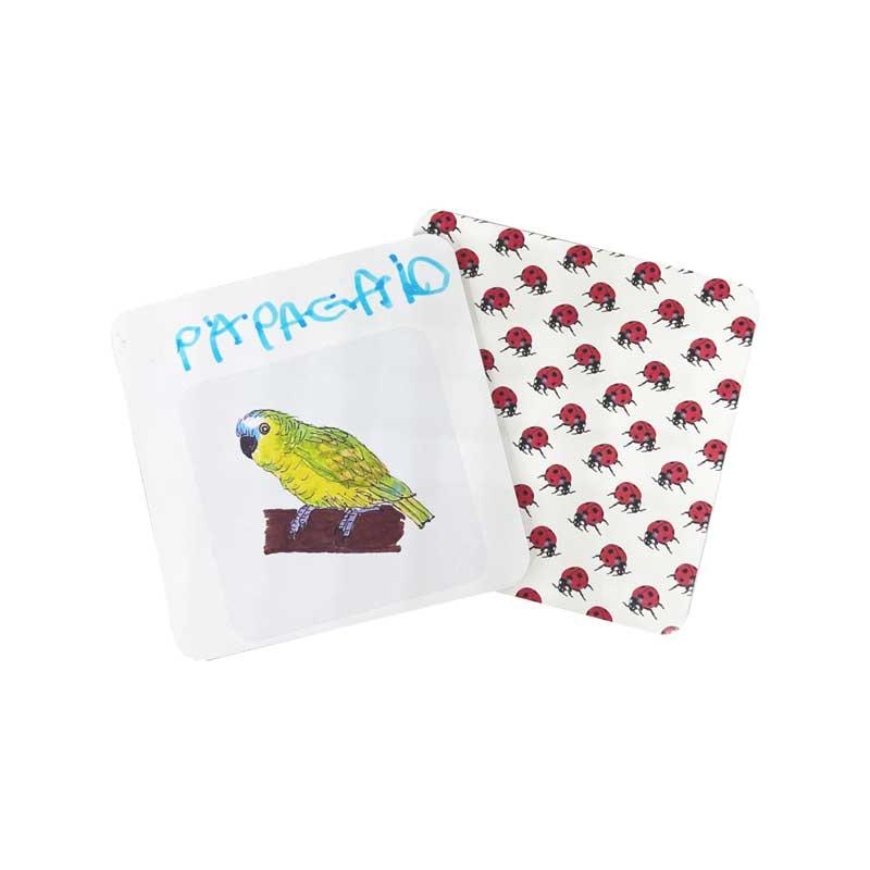 BichoDuos de A a Z - card com adesivo e nome do animal escrito por criança